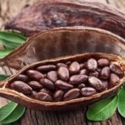 Какао бобы 250г фото