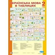 Таблицы. Українська мова 2 кл.. (70-48 см.) 48 шт. фото