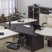 Кабинет руководителя BERLIN Director (Берлин директор). Мебель офисная. фото