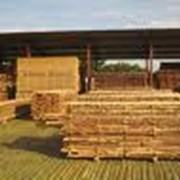 Сушка древесины на вакуумно-импульсных сушилках фото