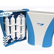 Система очистки питьевой воды FA Tulip фото