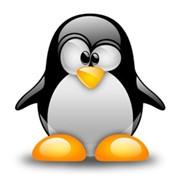 Настройка и обслуживание серверов Linux фото