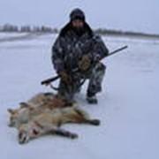 Тур охотничий Астраханская область фото