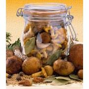Консервированные маринованные грибы фото