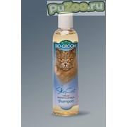 Bio-groom silky cat - шампунь-кондиционер био-грум с протеином и ланолином для кошек фото