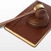 Представительство интересов клиента в судах, судебные процессы, арбитраж фото