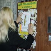 расклейка листовок и объявлений фото