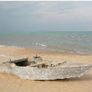 Отдых в Тунисе фото