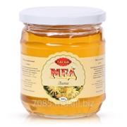 Натуральный мед «Липа» фото