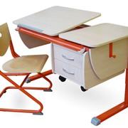 Парта Астек ТВИН 3 (парта 120 см +тумба+стул фанера) фото
