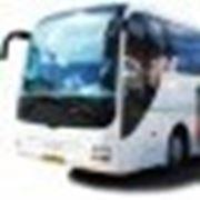 Ежедневные рейсы Ставрополь-Геленджик фото