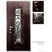 Изготовление и установка металлических дверей, ворот, ограждений фото
