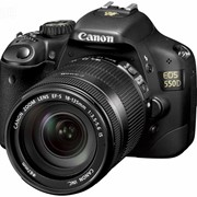 Прокат зеркальной фотокамеры Canon EOS 550D + объектив EF-S 18-55mm IS фото