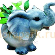 Цветочница Слоненок фото