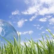 Экологическое консультирование фото