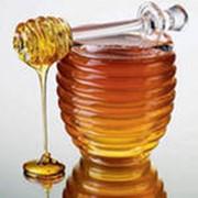 Мед в Алматы фото