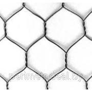 Сетка шестигранная оц. 16*0,7, 50000мм (гексогон) фото