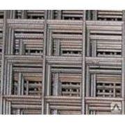 Сетка сварная 50х50х1,6 черная,50х50х1,6 оцинк фото