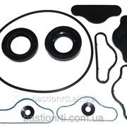 Ремкомплект НШ 100 А-3-02Д (с пластмассовой обоймой) фото