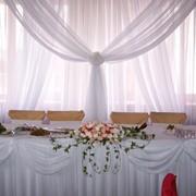 Прокат чехлов, скатертей, арок на свадьбу Чернигов фото