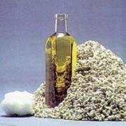 Хлопковое масло. фото