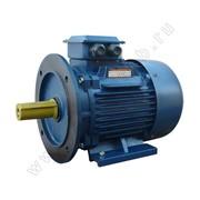 Электродвигатель 5АИ 200 M8 фото