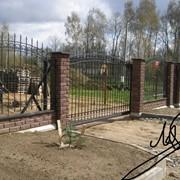 Металлические заборы, ворота, калитки, ограды, козырьки, навесы, перила фото