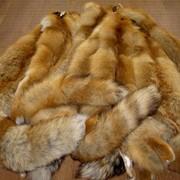 Пушнина лисы
