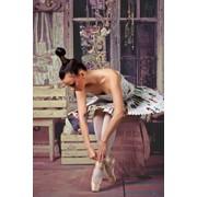 Barbie-dance-танец маленьких принцесс фото