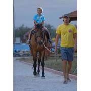 Услуги прогулки верхом на лошади, фотография. Катание на лошадях фото
