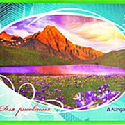 "Альбом 113514 Алингар AL 6739 ""Природа"" для рисования ( 24 л./ А4 ) на скрепке ( цена за 1 шт.) фото"
