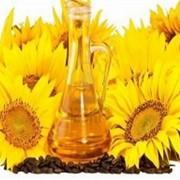 Utilaj pentru producerea uleiului (Оборудование для производства растительного масла) фото