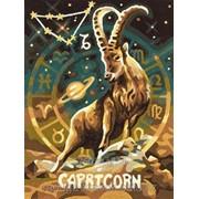 Картина по номерам Знак Зодиака Козерог фото