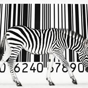 Регистрация штрих кодов в Украине фото