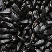 Кондитерская семечка фото