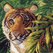 Рисунок на канве р.28/34 Индокитайский тигр фото