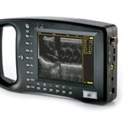 Ультразвуковой сканер для животных фото