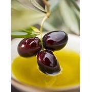 Масло оливковое Extra Virgin, Испания фото