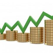 Продвижение компаний, фирм, предприятий, товаров и услуг в интернете фото