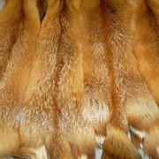 Набор на жилет из лисы фото