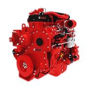 Дизельный двигатель Cummins QSL9 (SO19709) / Двигатель Камминз фото