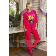 Женские спортивные костюмы Спорт костюм Ваза (265/ОТ) Малина велюр фото