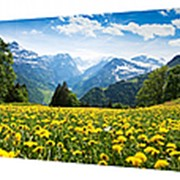Картина на холсте 33х70 л272 фото