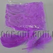 Перья фиолетовые 5-15 см 100 шт 3661 фото