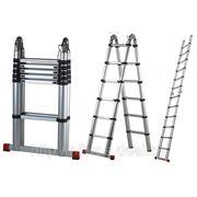 Лестница телескопическая двухсекционная алюминиевая 156/320см 12кг фото