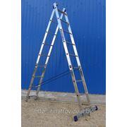 Лестница двухсекционная алюминиевая 5206, h=168/252 фото