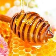Мёд с прополисом, мёд оптом фото
