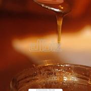 Мед акациевый фото