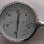 Термометр манометрический WSS фото