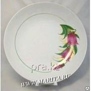 Блюдо (cухарница) с рисункомунком, 0С0182/1Ф34 фото
